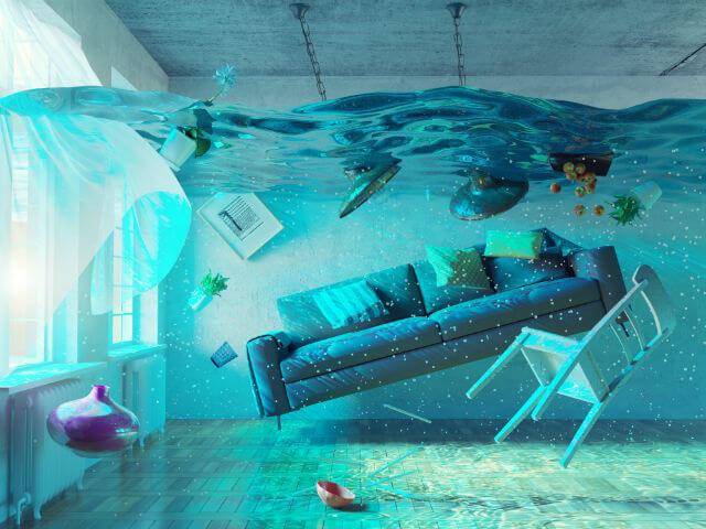 Ne ússzon a lakás!