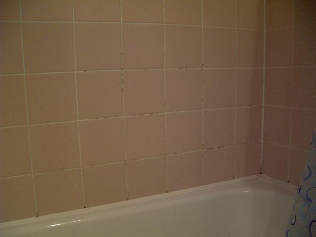 A penészes fürdő fala